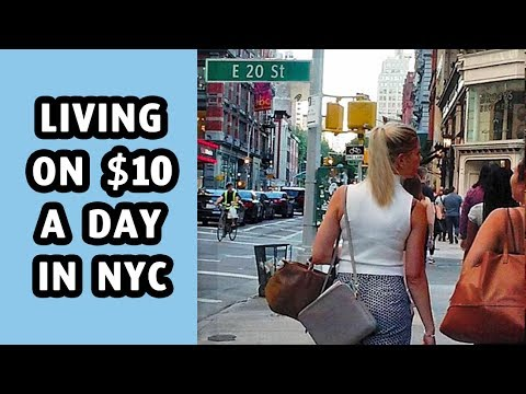Can you live on $10 a day in New York City?