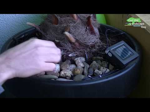 HOW TO SET UP AUTOMATIC WATERING POT |INDEPENDENT PLANT IRRIGATION BLUMAT PLANTER+SOLAR LED