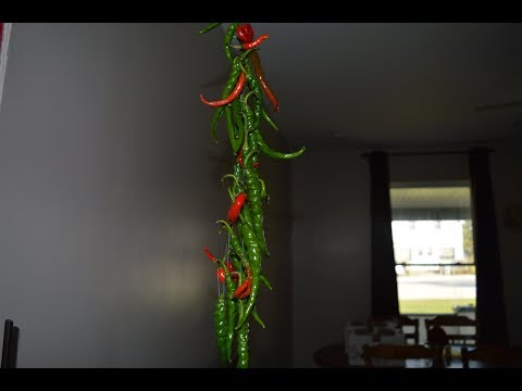Hang drying Hot peppers