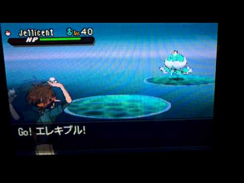 Pokemon black and White 2 How to catch Jellicent with hidden ability