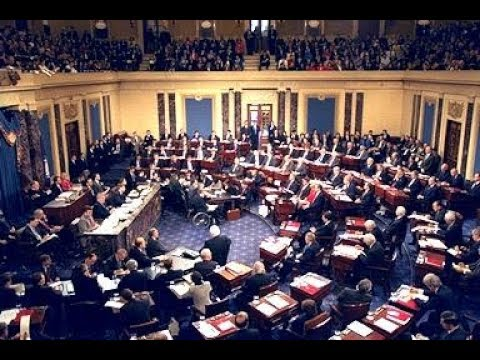 The Surprising History of the American Congress: Democracy, Innovation (2005)