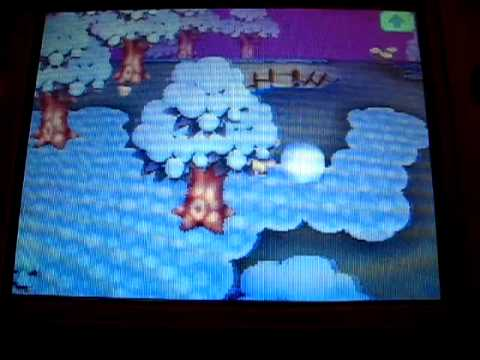 Making Snowman in Animal Crossing Wild World