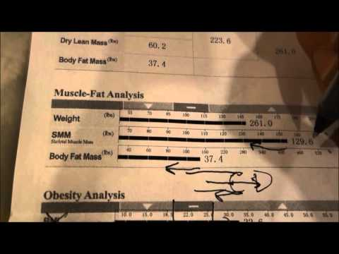 InBody Breakdown | Total Body Scan Found at Complete Nutrition