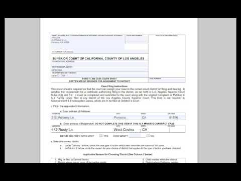 Family Law Case Coversheet (Divorce)