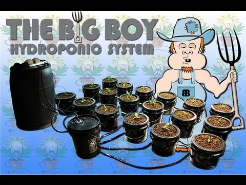 Big Boy Expandable Ebb and Flow Hydroponic Bucket System