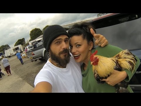 The deeds to his first chicken - Country Strife: Abz on the Farm: Episode 1 Preview - BBC Two