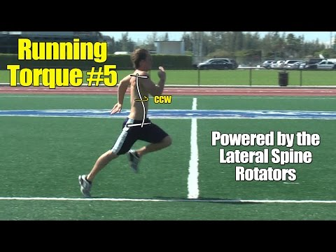 Athletic Muscle Torque #5 For Running Speed: Lateral Spine Rotator Muscles