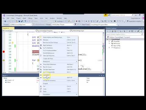 IS303 C# Using the debugger