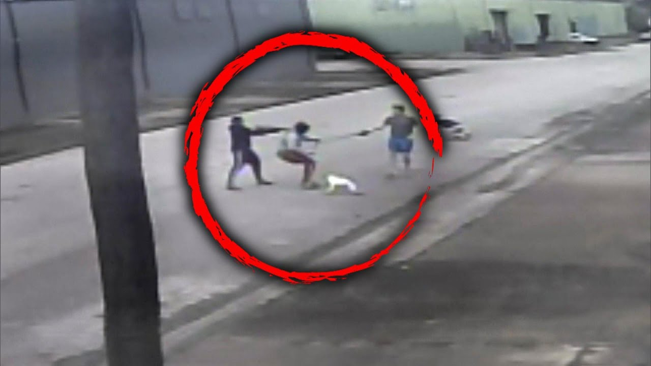 Dog Thief Shoots at Couple Then Takes Off With Puppy