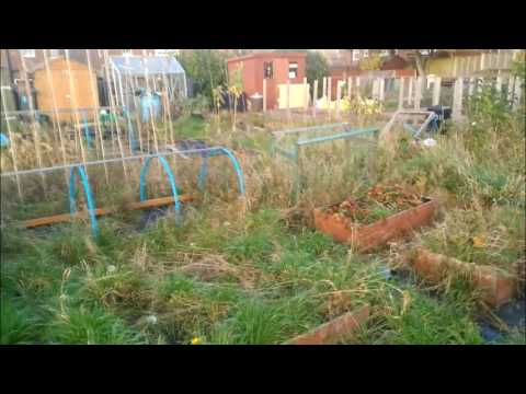 Leaving My Allotment | Bigger Things To Come