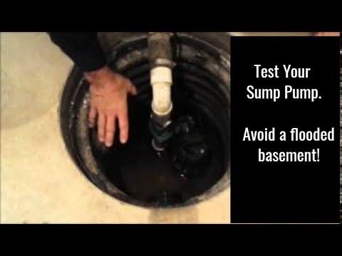 Sump Pump Check Up