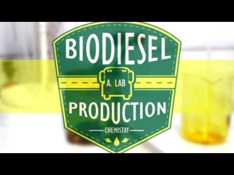 Biodiesel Production from Palm Oil, ChemRus | Chemistry