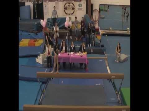 Vicky's Level 7 Gymnastics Routines (OGC Invite)