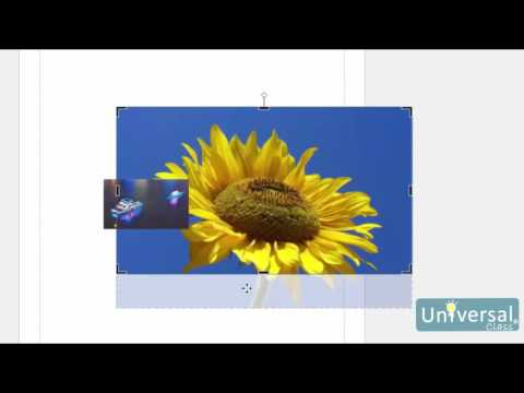 Lesson 7: Continuing to Work with Images - Microsoft Publisher 2016 Course | Universal Class
