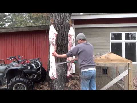THE HOBBY FARM. 6 Days of Hog Butchering. Sap and Syrup. Bacon. BBQ. Graphic.