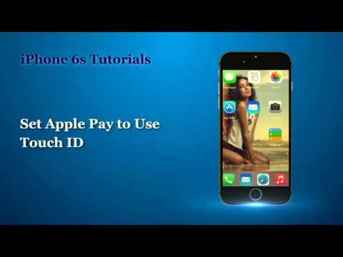 How to Set Up and Use Wallet and Apple Pay Support for Apple Samsung  user guide