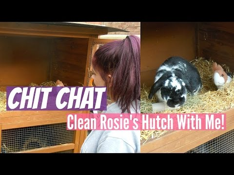 CHIT CHAT: Clean Rosie's Hutch With Me & UPDATES | RosieBunneh