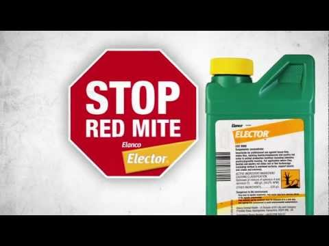STOP RED MITE application Elector UK