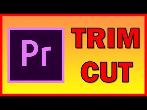 How to Trim / Cut a video in Premiere Pro CC 2019 - Tutorial