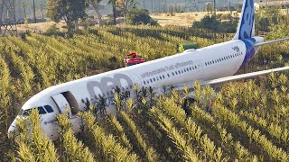Bird Strike and Landing in Cornfield Airbus A321 Ural Airlines | How was it? GTA 5 Version