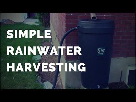Simple Rainwater Harvesting