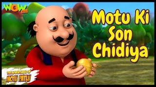 Cartoons | New Episodes Of Motu Patlu | Motu Ki Son Chidiya | Wow Kidz