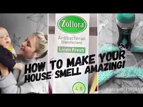 How to Make your House Smell Great  | House Smell Tips and Hacks ELLIE POLLY