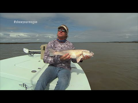 Flats Fishing for Redfish with DOA Lures CAL Jerkbaits