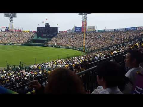 2018-05-27, Hanshin Tigers Vs. Tokyo Giants: fan support