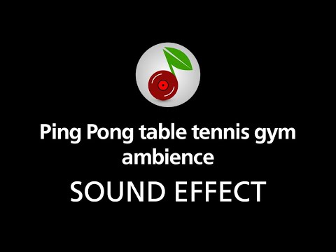 🎧 Ping Pong table tennis gym ambience LOOPED SOUND EFFECT