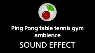 3 31 MB] Download 🎧 Ping Pong table tennis gym ambience