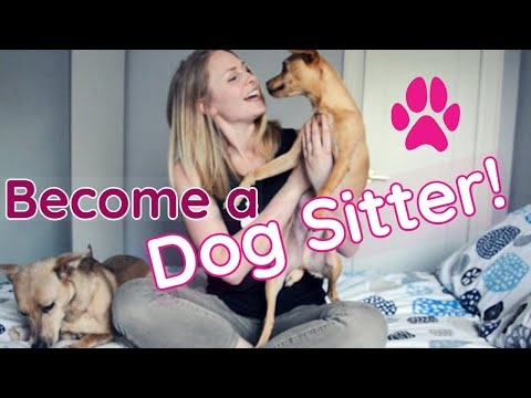 HOW TO BECOME A DOG SITTER | InRuffCompany.com