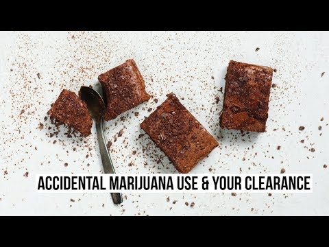 Accidental Marijuana Use and Your Security Clearance