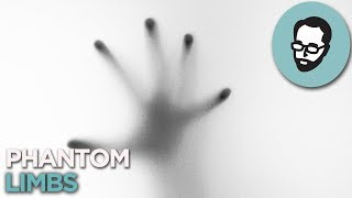 Download Phantom Limbs: When You Feel A Hand That Isn't There | Random Thursday Video