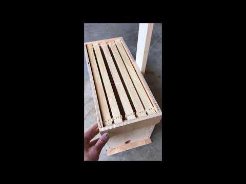 Build NUC Honeybee Swarm Trap