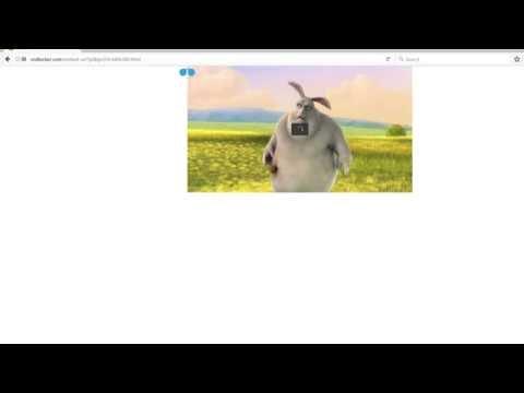 Firefox Fullscreen Flash crash