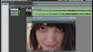 VidPlayVST - Video Player for Audio Workstations Videos