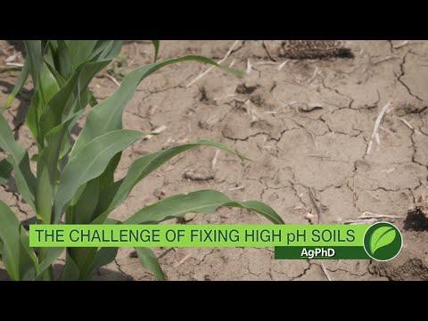 Fixing High pH Soils #1015 (Air Date 9-17-17)