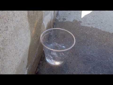 Bears Butt's Water Spitter Video
