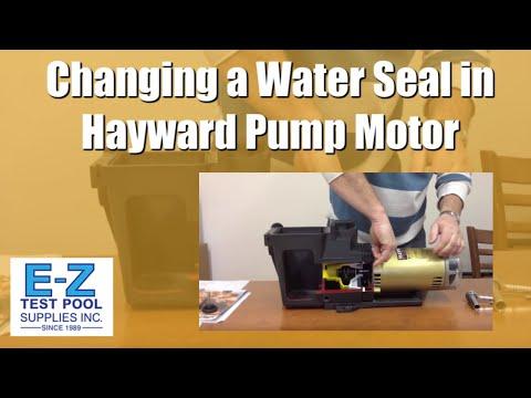 How to Change a Water Seal in Hayward Pool Pump Motor