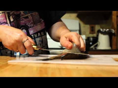 how to fillet a pan fish