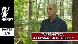 """Marcelo Gleiser: """"Matemática, a linguagem de Deus?"""" (PARTE 5/6)"""