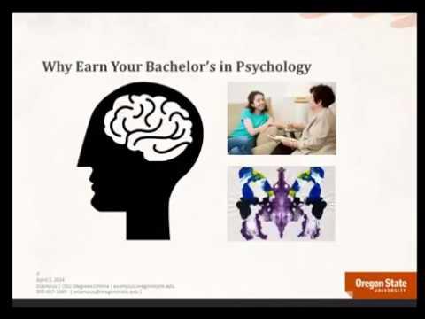 Online Psychology bachelor's degree Information PART 3