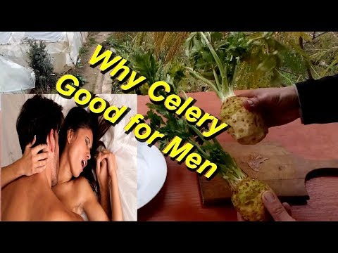 Why Celery Good for Men/ Benefits of Celery for Male
