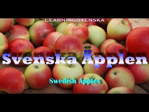 Learning Swedish (Lesson 15)