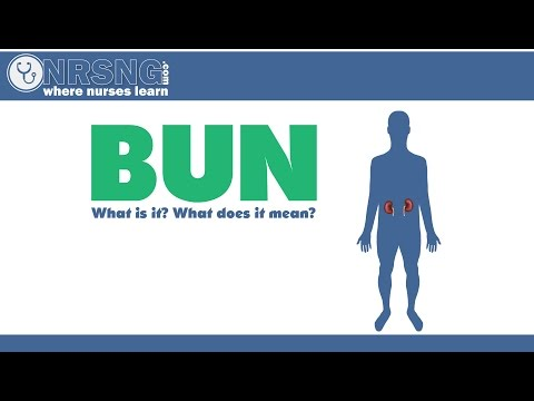 BUN (Blood Urea Nitrogen) What is it? What does it mean?