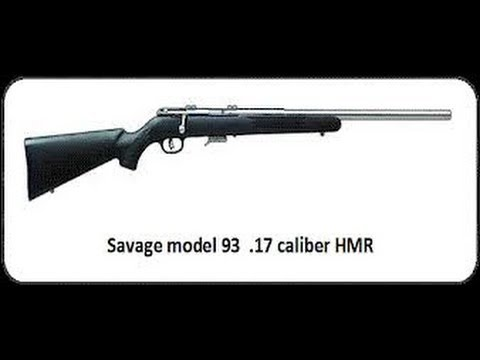 Savage Model 93 17 HMR Blowing up an Apple