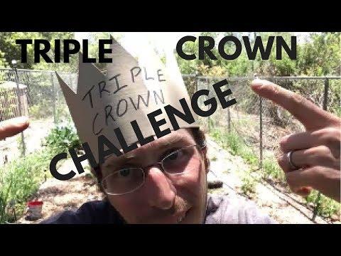 Triple Crown Challenge