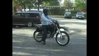Grand Theft Moped