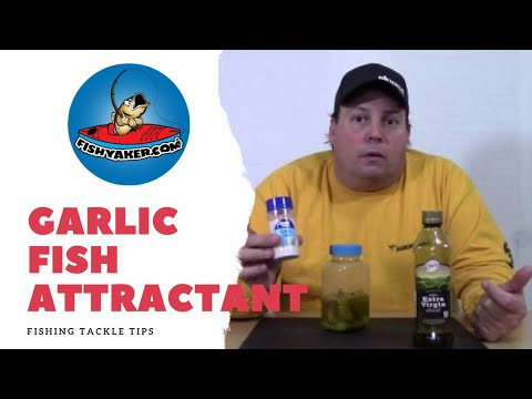Homemade Garlic Fish Attractant; Make  your own scent cheap!: Episode 224